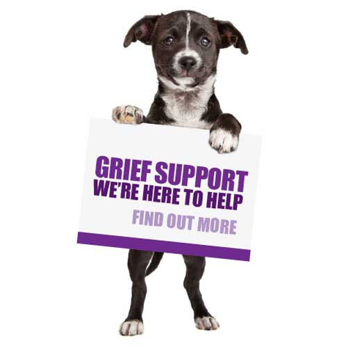 Grief Support. We're here to help.