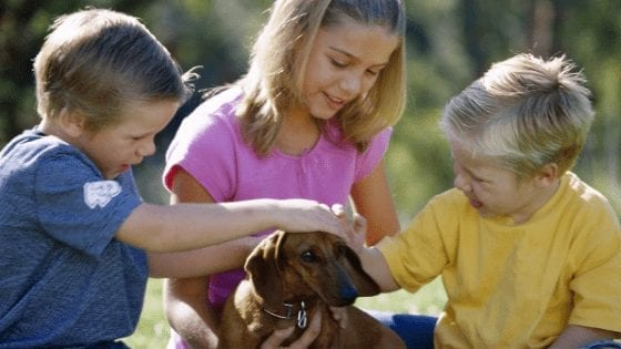 Helping children cope with pet loss