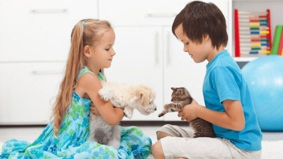 Choosing The Best Cats And Dogs Names