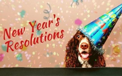 Make New Year's Resolutions For Your Pet (and You)