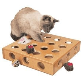 Fun Interactive Toys For Cats