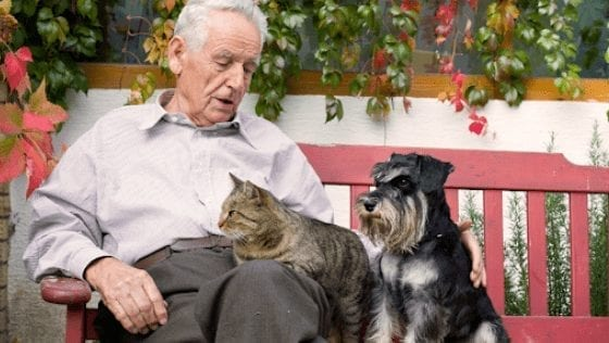 Mental Health and the Power of Pets
