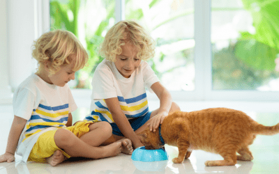 4 Most Common Pet Toxins Found In Your Home