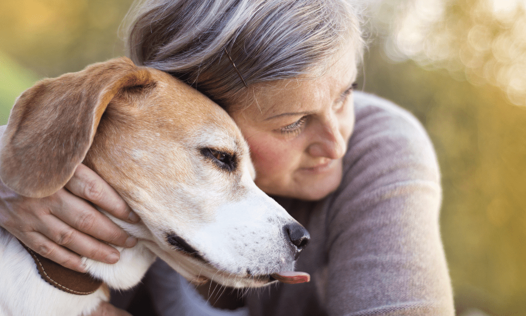 Practical Tips To Consider When Preparing For The Loss Of A Pet